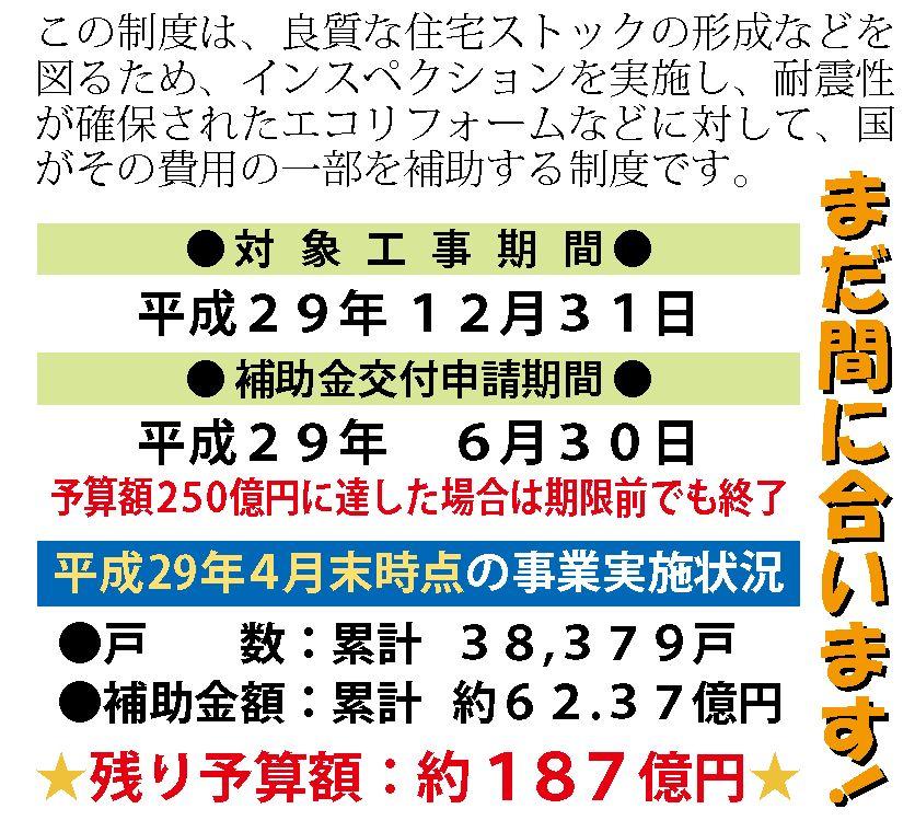 KuraSi-natu-sin103-20.jpg