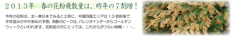 KuraSi-natu-sin69-11.jpg