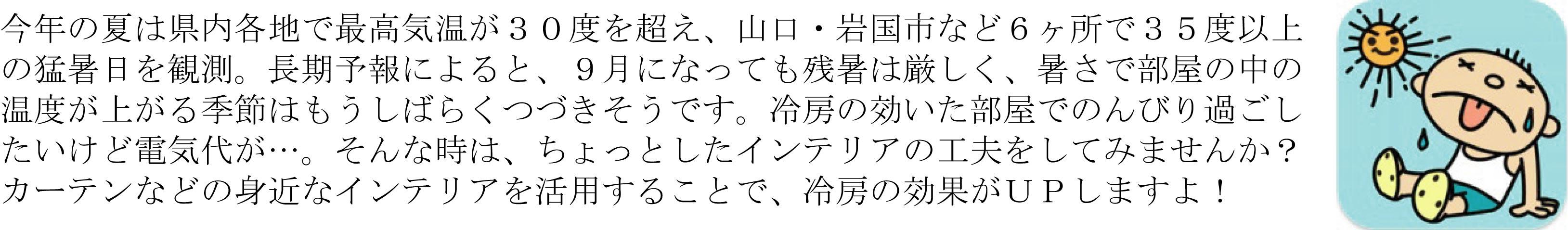 KuraSi-natu-sin75-08.jpg